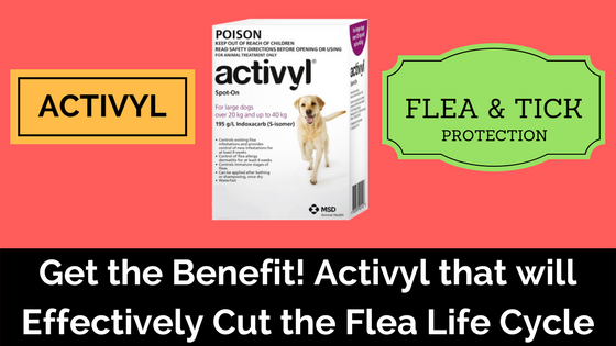 Activyl for dogs - Pet Care Supplies Blog