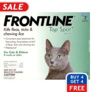frontline top spot cat
